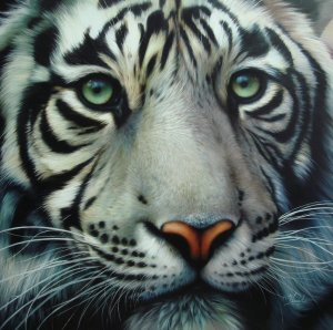 white_tiger_2_by_raipun