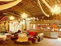 the bar at wild camp