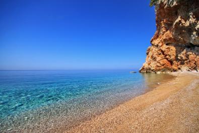 amazing beach trip